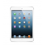 IPAD MINI 32GB WI FI